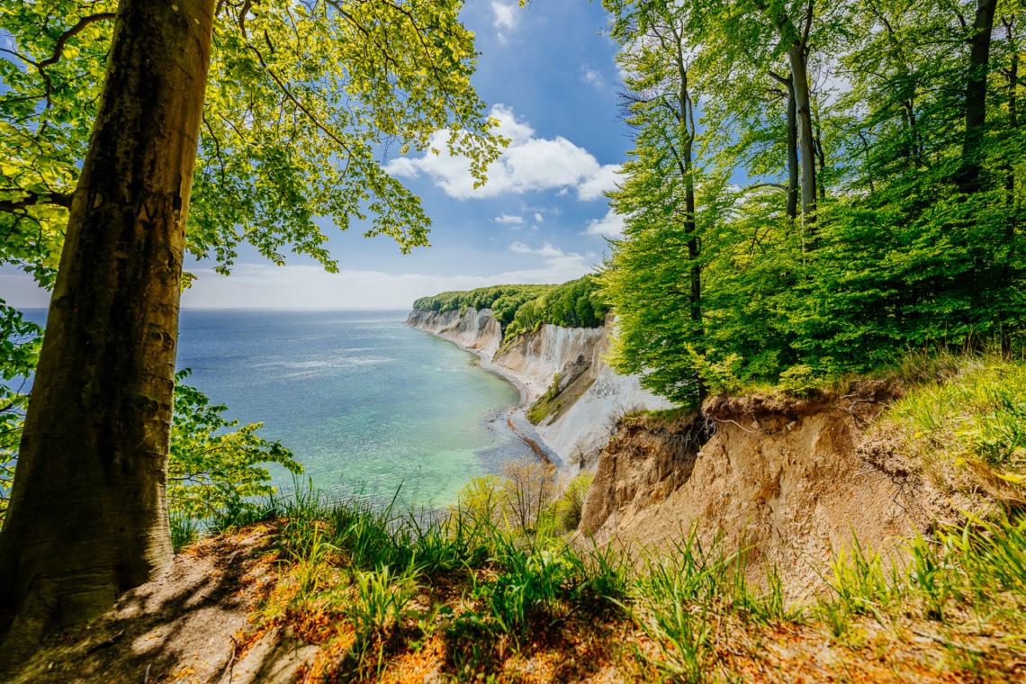 Die schöne Aussicht an der Kreideküste im Nationalpark Jasmund